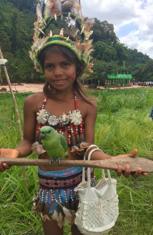 Бразилія: Амазонка